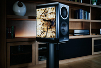 TAD Compact Evolution One Speaker